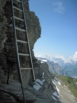 A ladder on the Rotstock Via Ferrata. The Eigergletscher Station and Eiger Trail are behind and below.