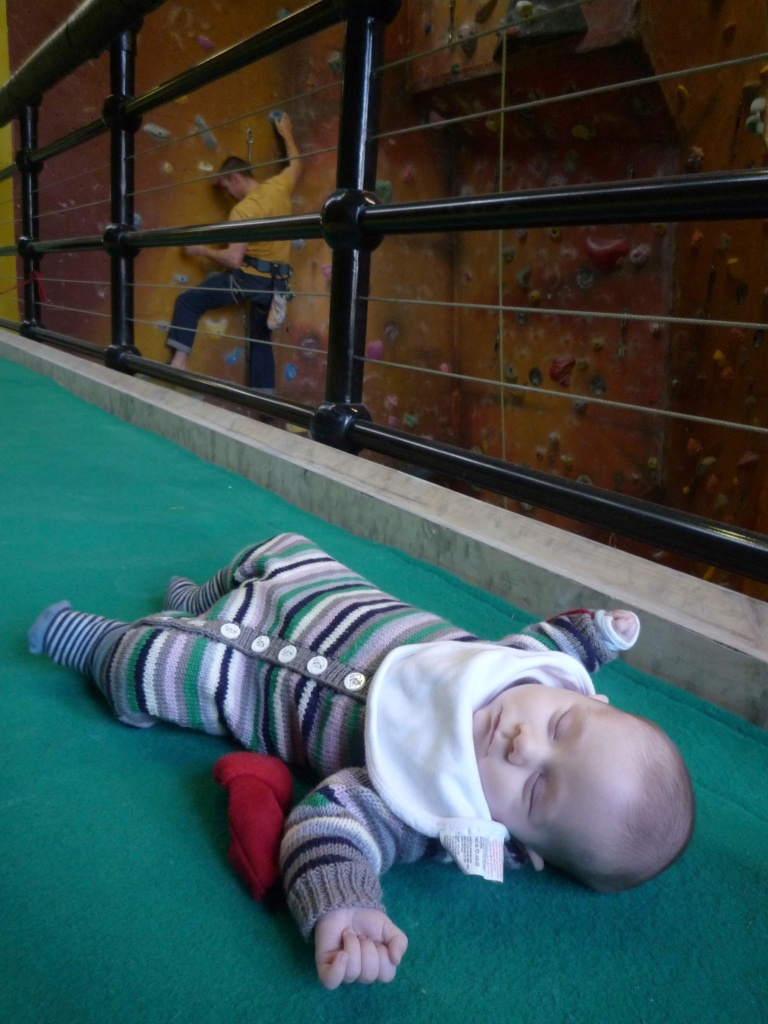 Leo asleep on a bouldering mat.