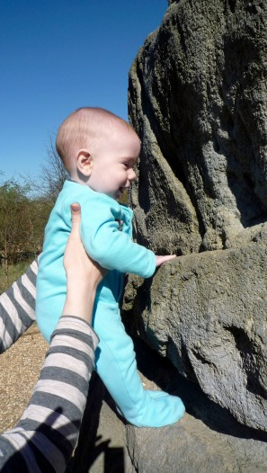 Leo gets the feel of the (artificial) rock on a Fairlop Waters boulder.