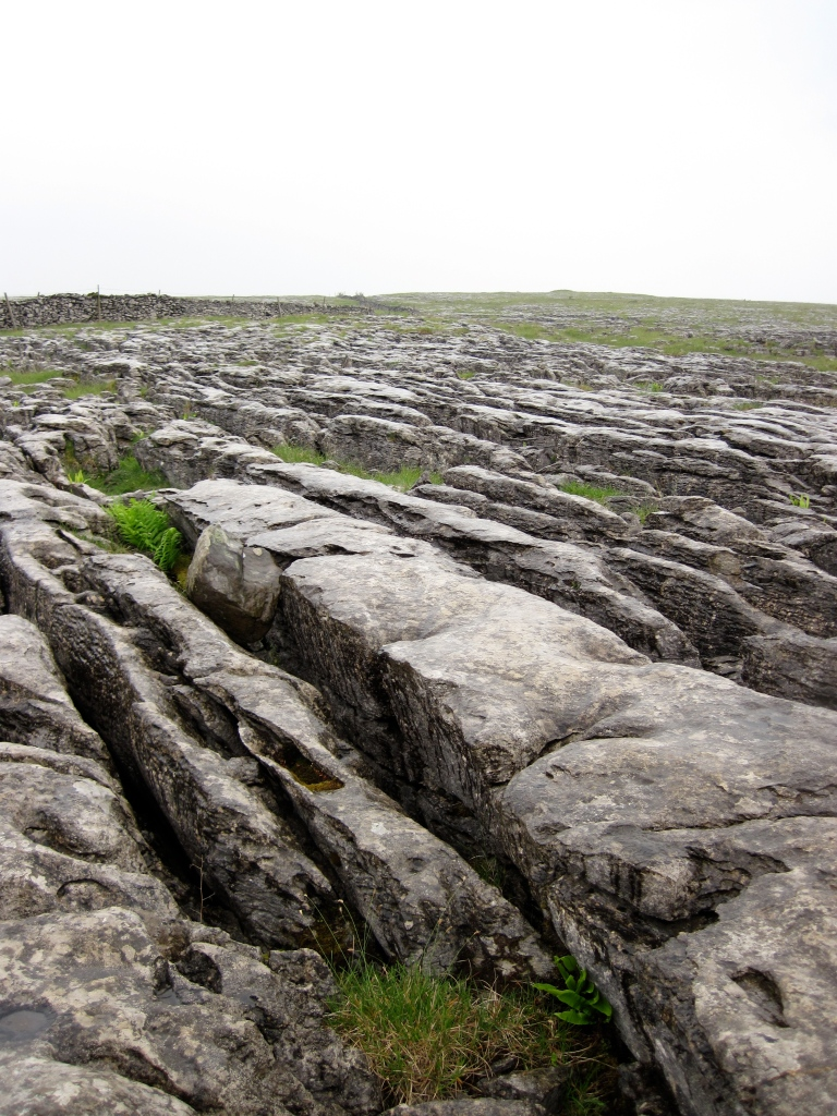Limestone pavement at Sulber on the slopes of Ingleborough in the Yorkshire Dales.