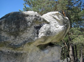 A boulder with the head of a shark at Rocher des Potets.