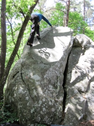 Climbing at Buthiers Piscine, Fontainebleau.
