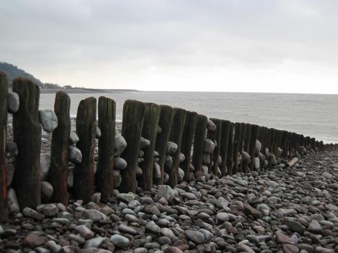 An old groyne on Bossington Beach.