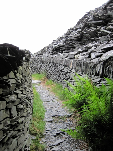 A path up through the slate quarry.