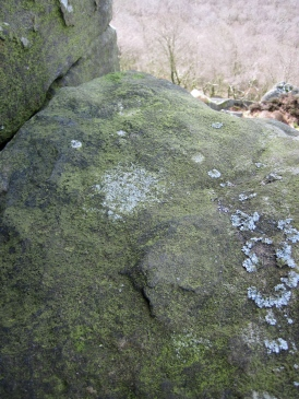 Slimy green lichen on the Cioch Top Boulders.