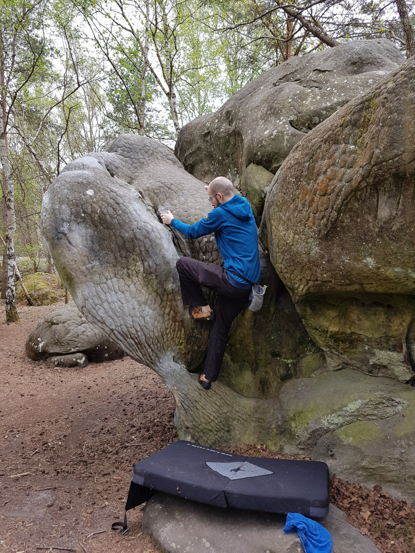 Back in the Woods – Bouldering in Fontainebleau