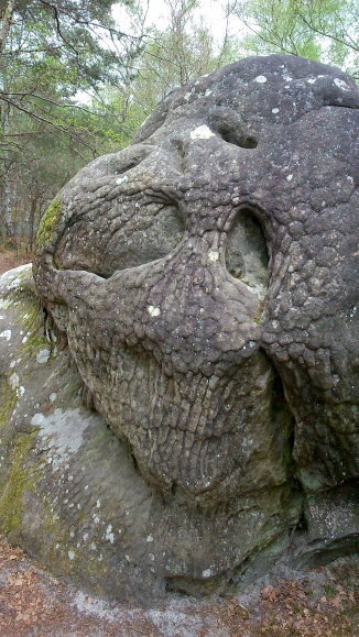 A creepy looking boulder in the Canche aux Merciers area of the Fontainebleau forest.