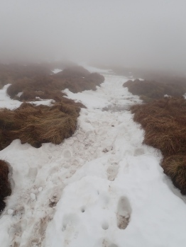 Snow covering the path up Waun Fach.