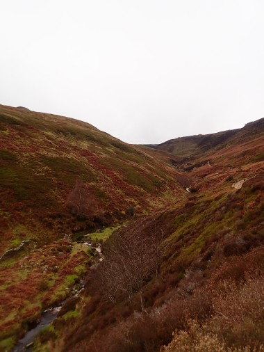 My route up Grindsbrook Clough.