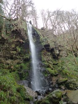 I always really like visiting waterfalls on rainy days. This is Mallyan Spout, in the valley below Goathland.