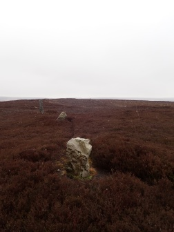 The stone row (AKA stone alignment) on Simon Howe Rigg in the snow.