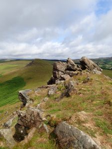 One of the summits of Crook Hill.