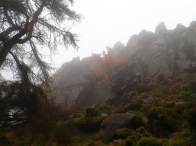 The Upper Tier at the Roaches - pretty, but not good for climbing on that day.