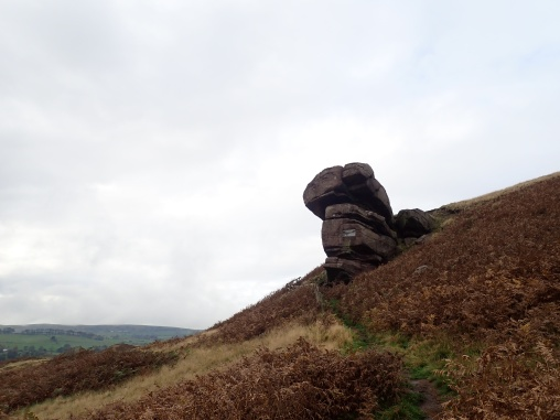 The Hanging Stone, which sits at one end of the Roaches ridge, near Danebridge. It has two plaques on it - one in memory of the local squire's dog (buried under the stone) and the other in memory of Lt Col Courtney Brocklehurst, whose family used to own the Roaches estate.